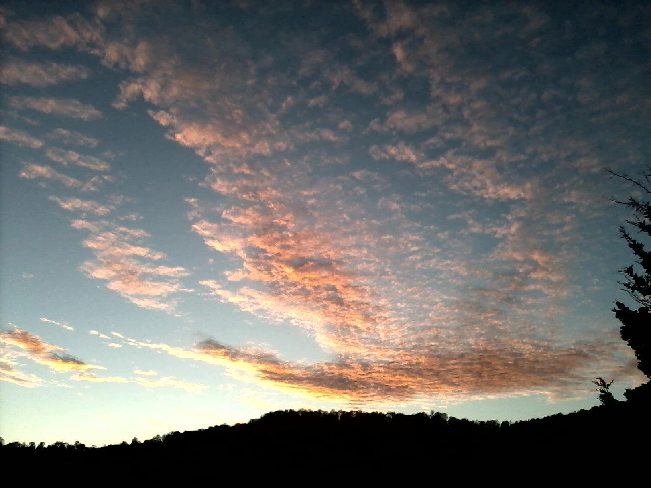 Winter Sunset, Sacred Maples